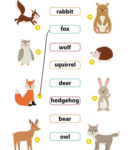 Match Words Animals