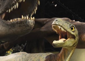 Albertosaurus_CreditRoyalTyrrellMuseumofPalaeontology